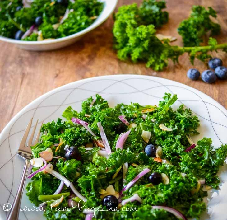 Kale and Blueberry Salad Recipe [Paleo, Keto, AIP] #paleo #keto #aip #recipes - https://ketosummit.com/kale-blueberry-salad-recipe-paleo-keto-aip