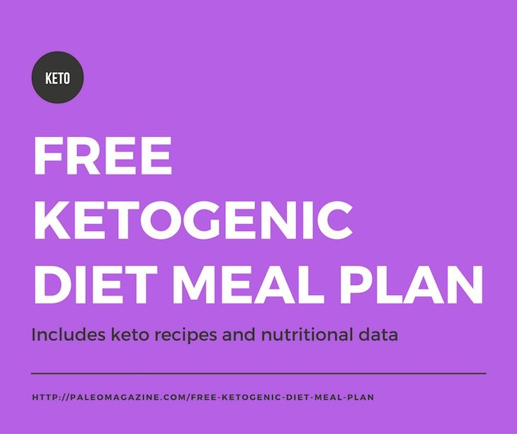 Free Ketogenic Diet Meal Plan  Includes Recipes And Nutritional Data