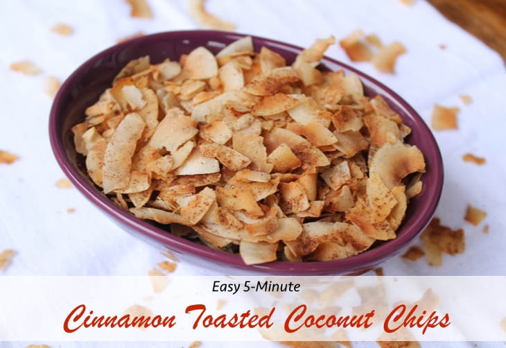 Five minute cinnamon toasted coconut keto chips